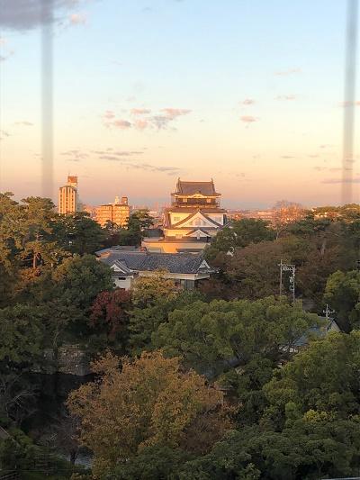 岡崎城.jpg